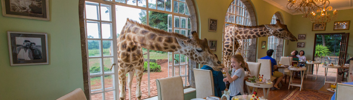 Best Family Travel - Giraffe Manor, Nairobi, Kenya