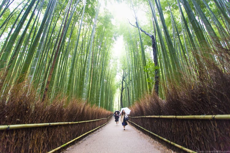 Places to see in Japan - Arashiyama Bamboo Grove in Kyoto