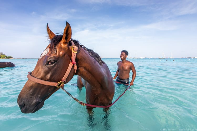 Affordable family travel - In Barbados, horses are brought down to the sea every morning. It's free to get in the water with them, and the nearby Hilton is only $159. Plane tickets from the US can be inexpensive too. You just have to prioritize your spending to make it work.