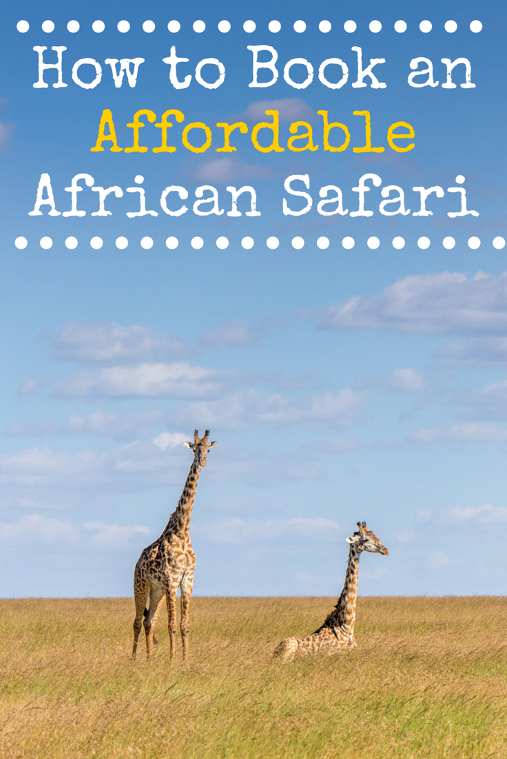 How To Book An Affordable African Safari Travel Babbo