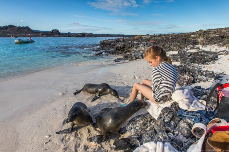 Galapagos with Kids - Sea lions checking out my daughter
